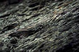 انواع کک نفتی و بررسی فرایند تولید کک سوزنی