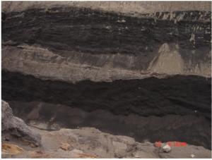 رخ نمون معدنی لئوناردیت